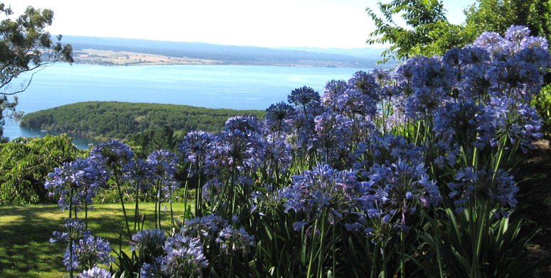 Acacia Cliffs Lodge offers luxury Taupo accommodation  - we are your 'Luxury Bed and Breakfast'